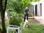attività con il cane